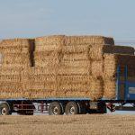 hay-wagon-889534_960_720